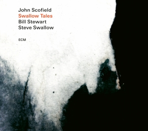 Swallow Tales cover