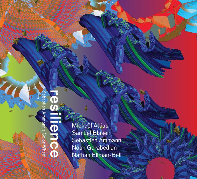 "Sebastien Ammann's Color Wheel – ""Resilience"""